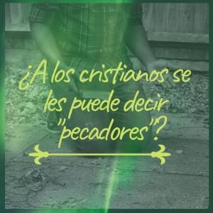 ¿A los cristianos se les puede decir _pecadores__